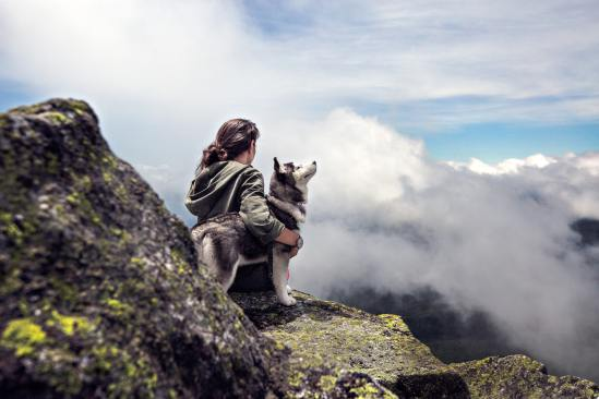 clouds-girl-mountain-dog-36372